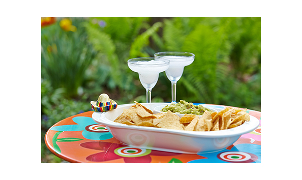 Nora Fleming Chip And Dip Bowl With Minis