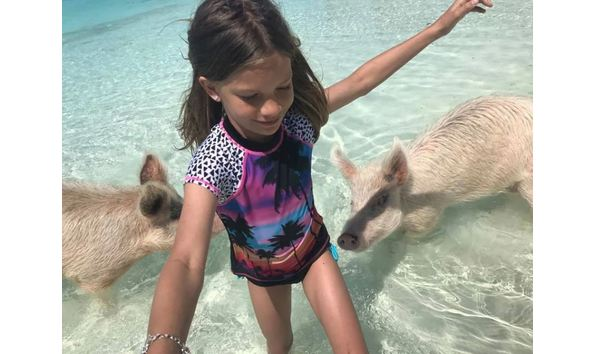 Swim with the Pigs -by Hidden Beaches (Item #45)