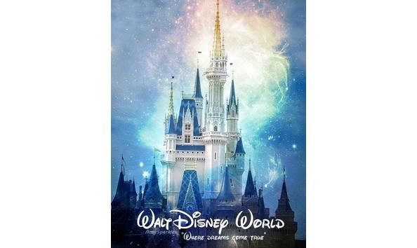 Disney World - 4 One Day Park Hopper Passes