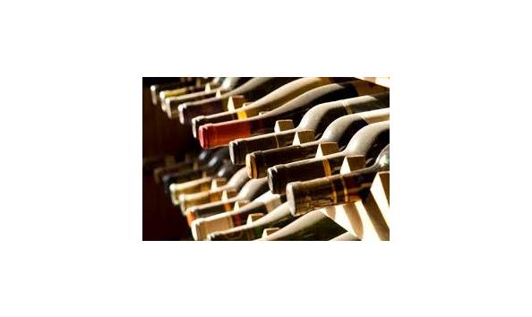 Instant wine cellar auction ideas