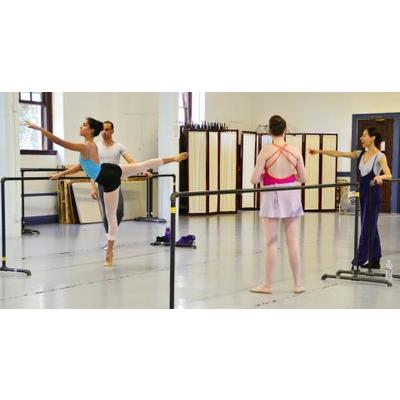 10 Class Card for Ballet and Amalgamado Movement Classes at Integrarte