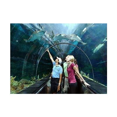 Image seaworld tunnel