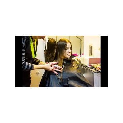 Haircut and Deep Condition with Lisa Borgo