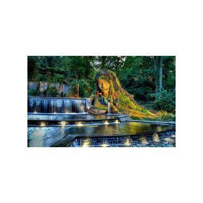 Atlanta Botanical Garden #2