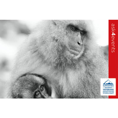 Image swv auction images 77