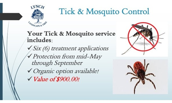 Big image tick   mosquito   lynch towns