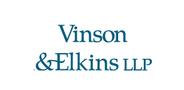 Sponsor logo ve for aution