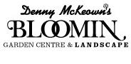 Sponsor logo denny mckeown new logo 2 black