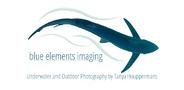 Sponsor logo big image big image blue elements imaging logo